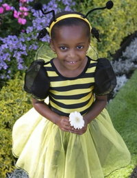 Image of Bumble Bee dress
