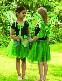 Image of Green Sparkle Fairy Set