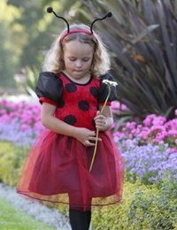 Image of Ladybird dress
