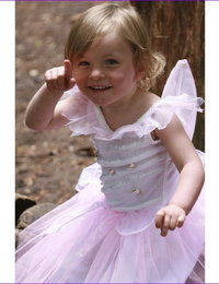 Image of Rosebud Fairy Dress